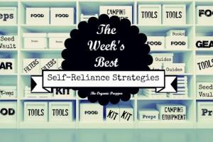 Feb 25 Self Reliance Strategies