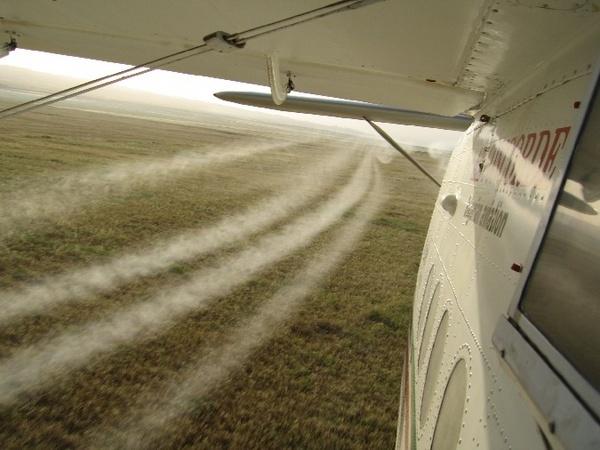 An-2_plane_spraying_wheat_crops